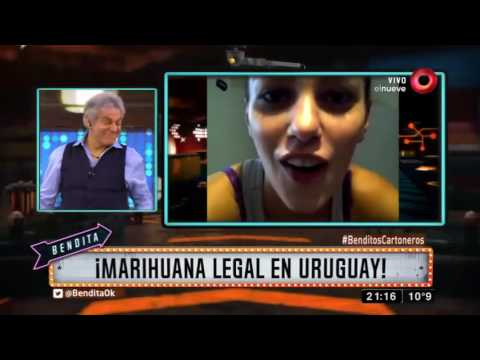 ¡Marihuana legal en Uruguay!