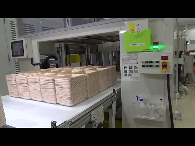 TFP-T-1000 Series Compressed Air Vacuum Forming Machine + TCP Series Servo Toggle Type Super Shuttle Machine Video thumbnail