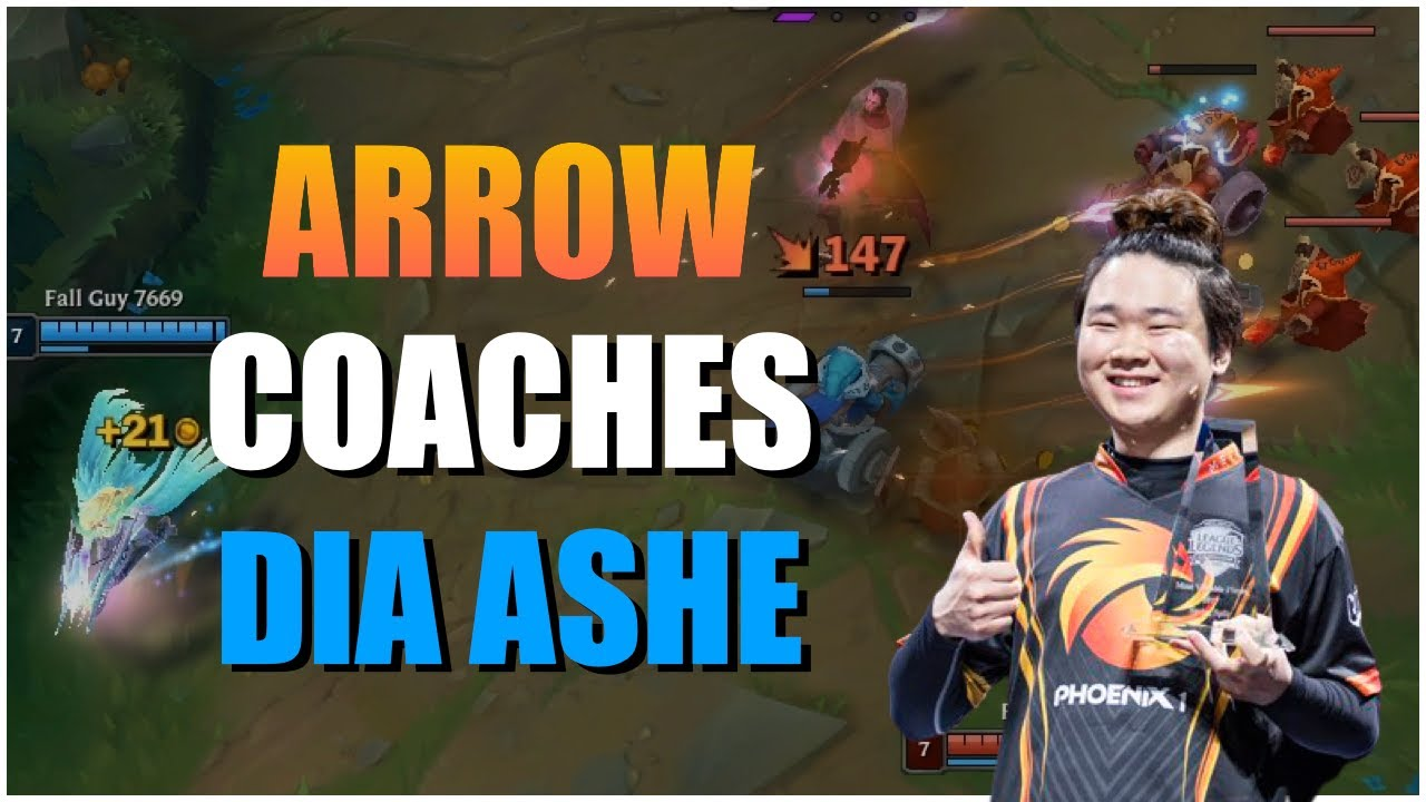 Arrow|Feedback DIA ADC! Wave control & How to end the game! MUST WATCH
