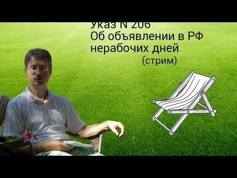 Указ N 206 Об объявлении в РФ нерабочих дней (конституционный стрим Романа Мельниченко)