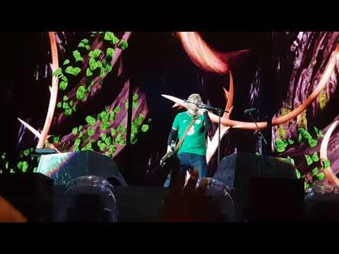 Ed Sheeran - Shape of You - Live in Dublin Phoenix Park