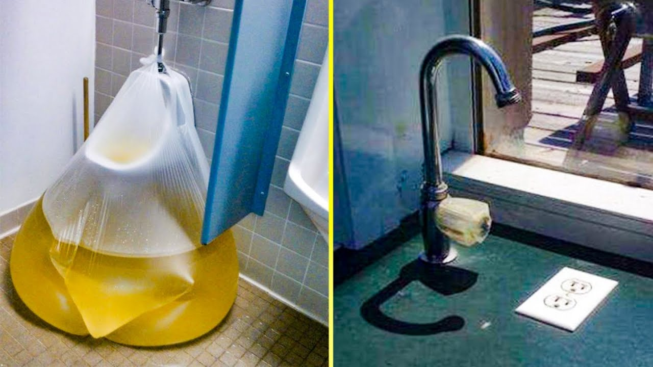 plumbers-whose-masterpieces-should-be-flushed-down-the-toilet-funny-photos