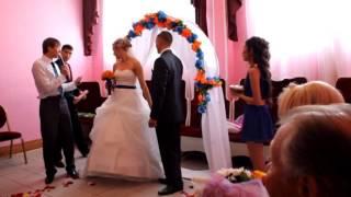 Ведущий на свадьбу Владимир Мартынов, г.Омск. Выездная регистрация брака в Омске