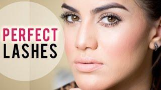 Perfect Lashes Thumbnail