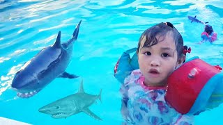 Misol swim with Shark in the pool