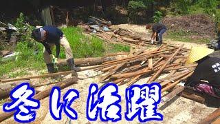 【山復興】破壊した小屋から数年分の○○を作る!!
