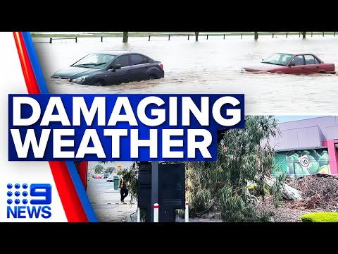 Parts of Victoria urged to evacuate floodwaters   9 News Australia