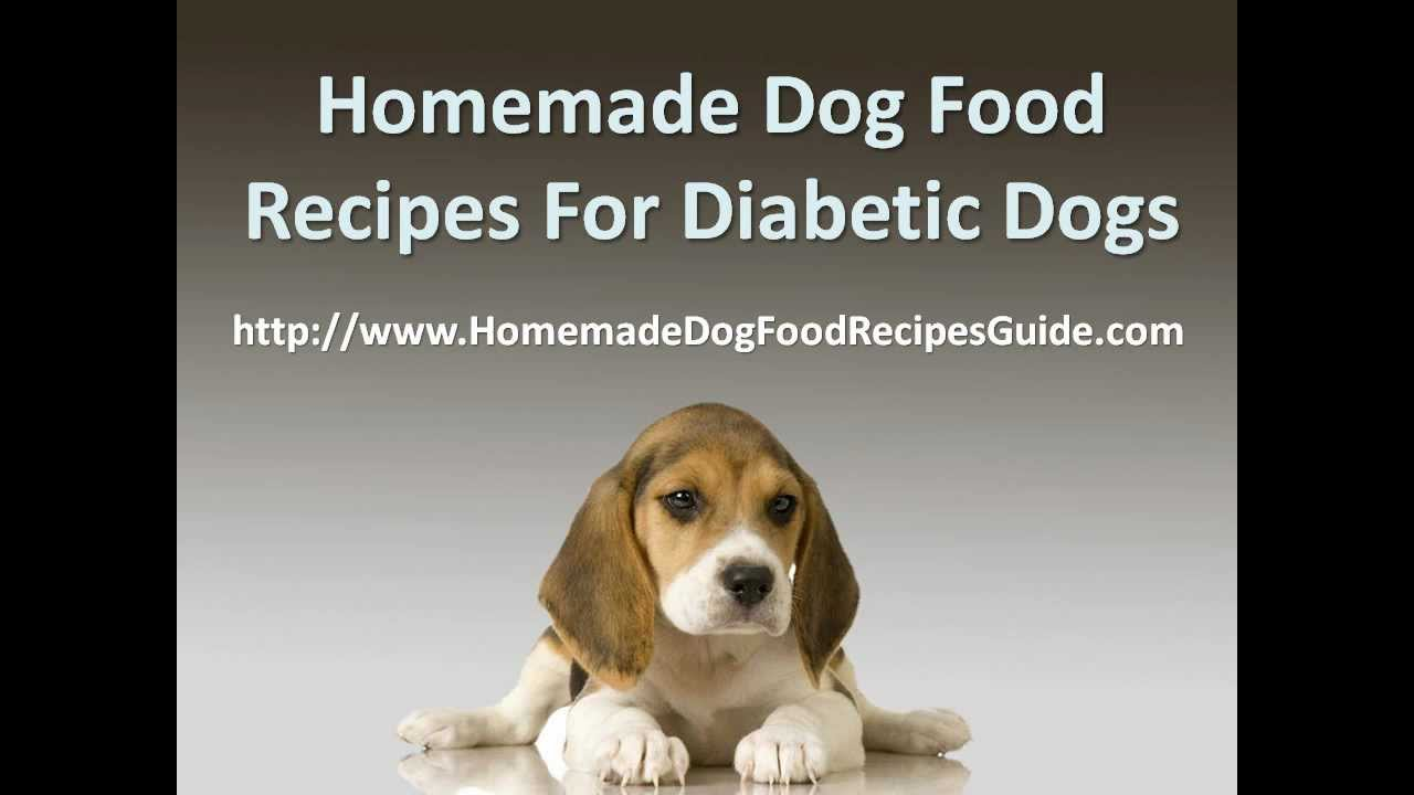 Homemade Dog Food Recipes for Diabetic