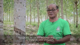 Higher income for rubber farmers