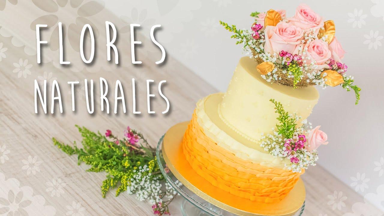 Decoraci n de tarta con flores naturales quiero cupcakes for Adornos con plantas de nochebuena