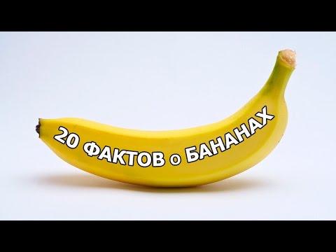 Бананы, польза и вред бананов, состав бананов, витамины в