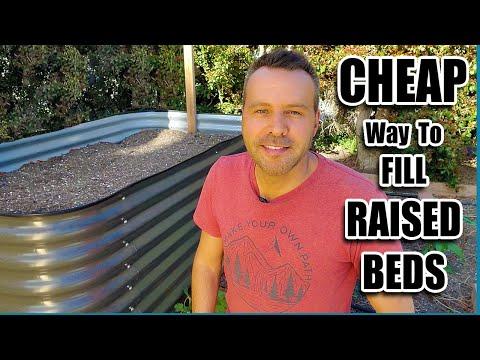 Super CHEAP Secret to FILL BIRDIES RAISED BEDS