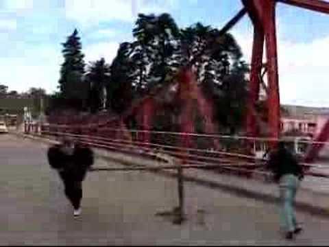 Puente Carmelo 2