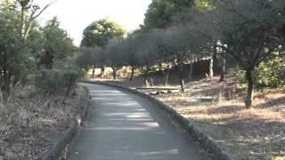 【散歩動画】群馬県桐生市「桐生南公園」