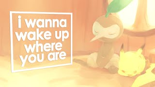 PSMD | i wanna wake up where you are