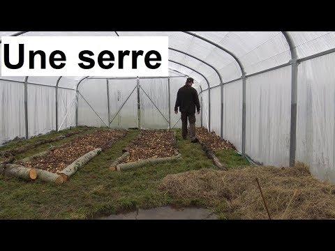 Une serre pour de la permaculture etc ...