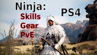 black Desert PS4 - Ninja - Simple Skill, Gear and PvE Guide