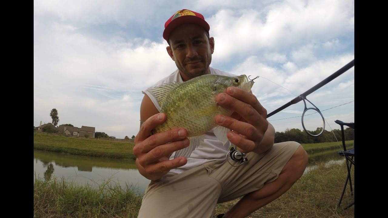 fishing creek singles dating site Fishing creek's best 100% free online dating site meet loads of available single women in fishing creek with mingle2's fishing creek dating services find a girlfriend or lover in fishing creek, or just have fun flirting online with fishing creek single girls.