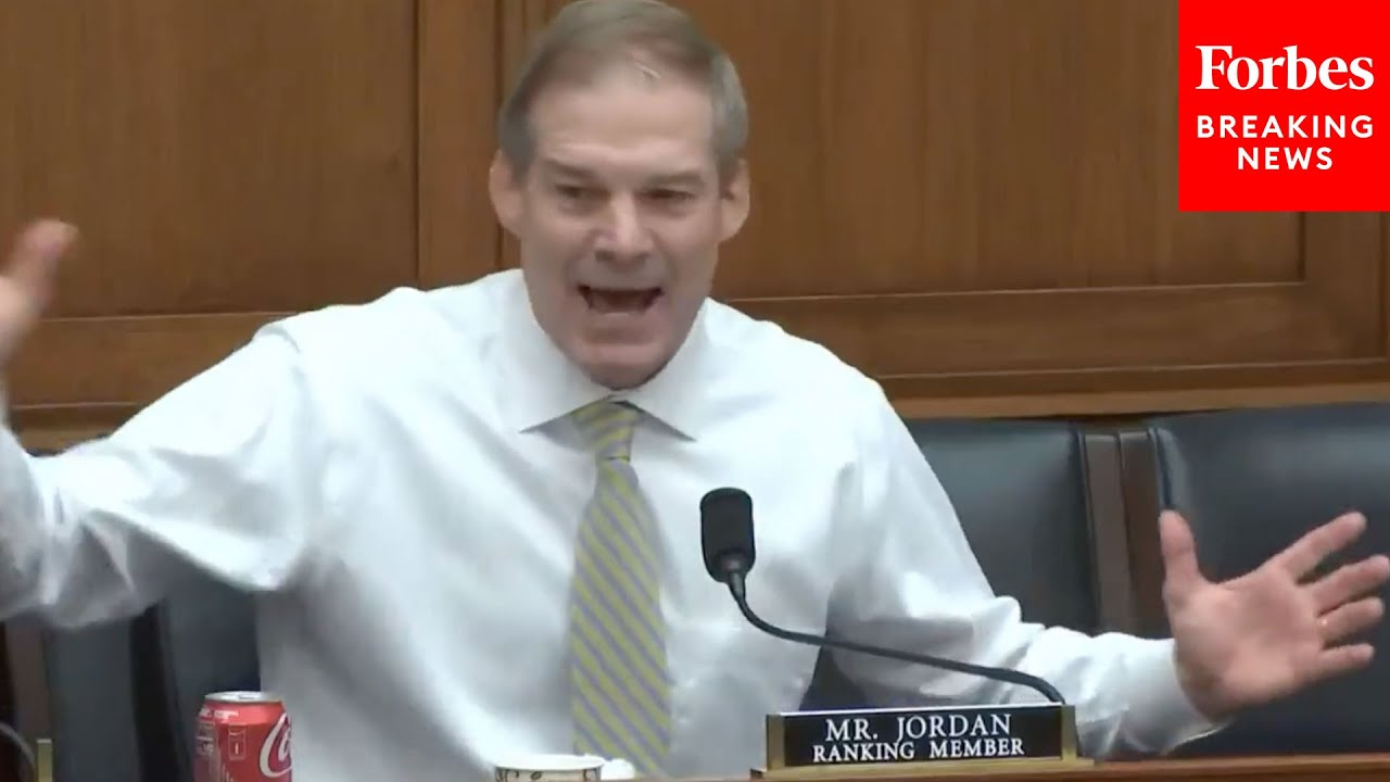 'Dumbest Thing I've Heard Said Today, Holy Cow!': Jim Jordan Unleashes On Democrats D