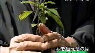 ⑤01土地本来の木を一粒のどんぐりから育てる方法を横浜国立大学の名誉教授の宮脇昭先生が伝授 2005 1227作成