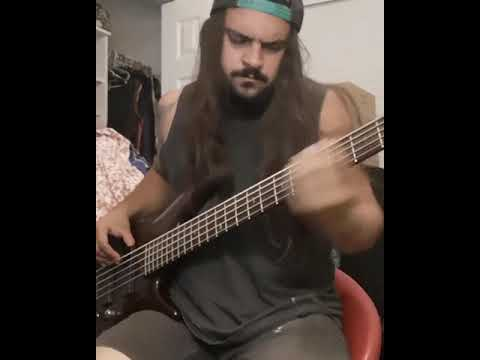 Download I Can Feel That - Mausberg (bass cover)