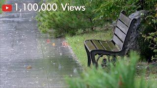 [4K] 공원 벤치위로 비 내리는 소리 . 우산 속에서…