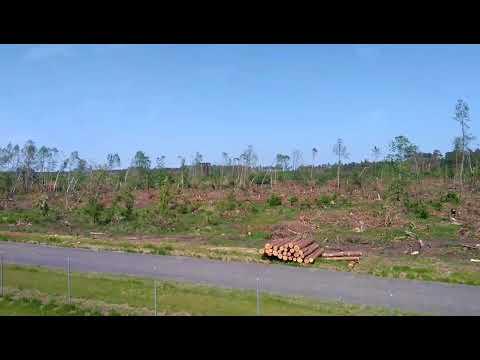 Ужас. Последствия урагана в Польше (часть 2)