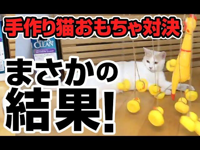 【神猫回】最強の猫用おもちゃを手作りしよう!(後編)