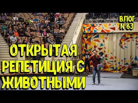 Дан Запашный и Нижнетагильский Цирк организовали открытую репетиция артистов и их животных