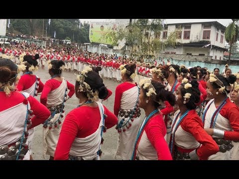 Arunachal's Nyishi community celebrates pre-agricultural festival : Arunachal Pradesh news
