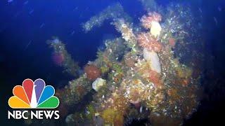 Underwater Drone Shows Wreckage Of WWII Destroyer Off Alaska's Coast | NBC News