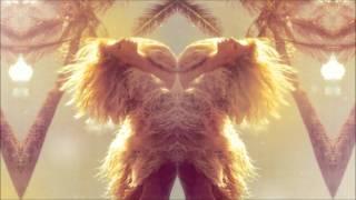 Datarock - Princess (Morgan Z Remix)