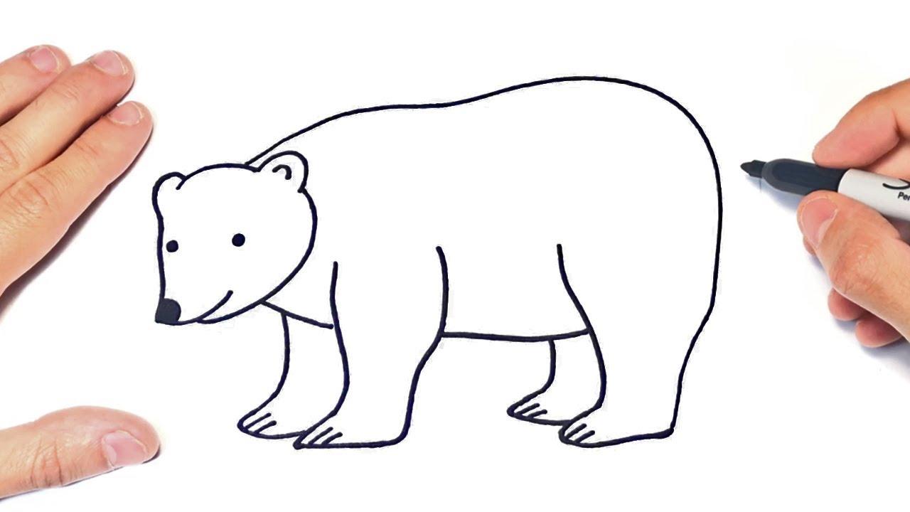 How To Draw A Polar Bear Step By Step Polar Bear Drawing Lesson Youtube