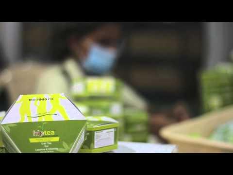 Making of Bio Food Co Tea!