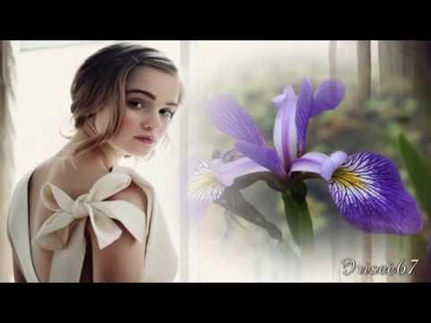 ●•●• Iris •●•●