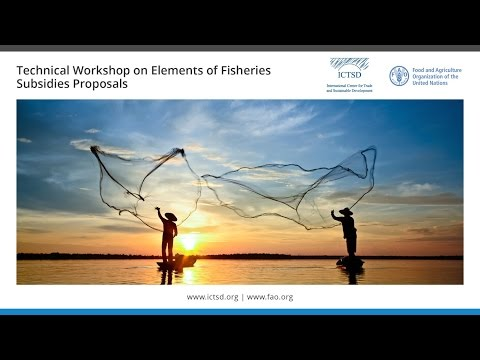 Technical Workshop on Elements of Fisheries Subsidies Proposals