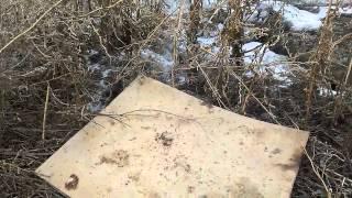 Охота петлей на куропатку видео