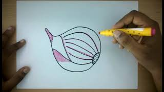How To Draw a Purple Onion | Easy Step by Step Vegetable Drawing for kids