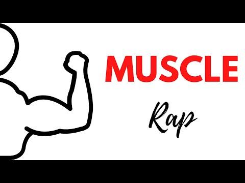 Muscle Rap!