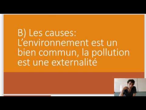 Terminale ES SES Révisions Croissance et Environnement