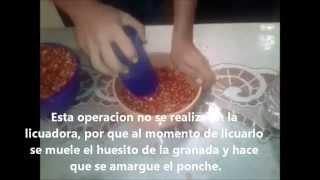 Ponche De Granada Itcg
