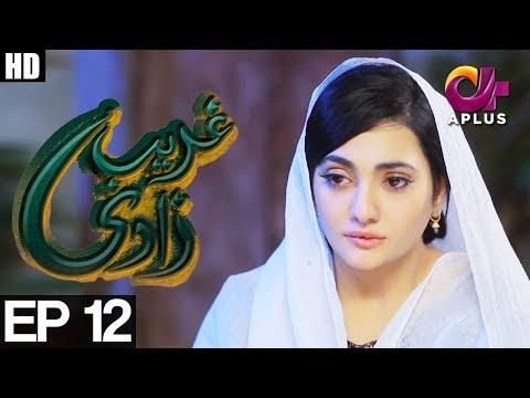 Ghareebzaadi - Episode 12 - A Plus ᴴᴰ Drama