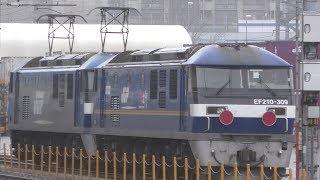 JR貨物電気機関車EF210 13とEF210 309 神戸貨物ターミナル