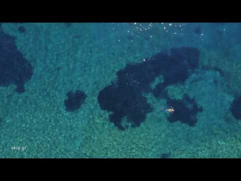 Peninsula,Agia Pelagia at the Dock 2,Crete Dji3 Pro Phantom