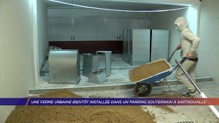 Yvelines | Une ferme urbaine bientôt installée dans un parking souterrain à Sartrouville