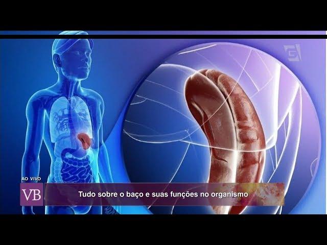 Baço: Importância e Funções - Dr. Tércio Genzini