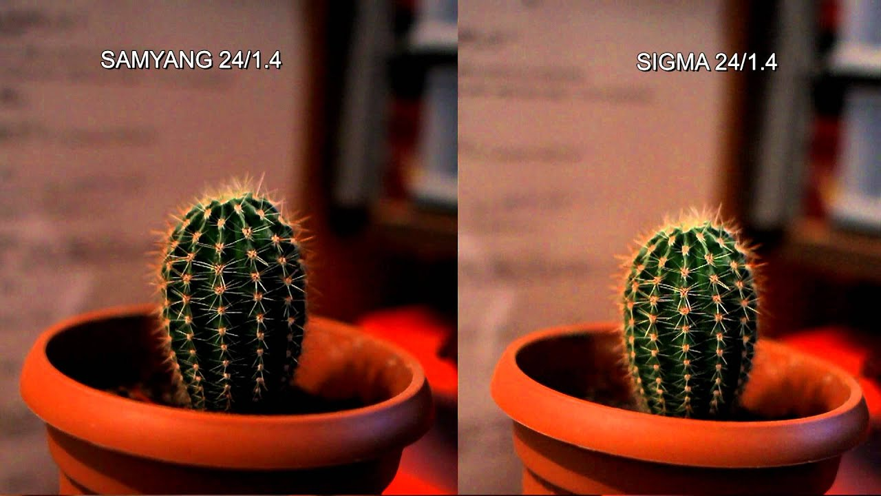 SAMYANG 24mm/1.4 vs SIGMA 30mm/1.4 - YouTube