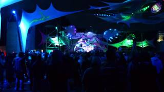 Cosmosis @ Psy-Fi 2014 - Into The Vortex Festival (Dance Of The Cosmic Serpent) 1080HD