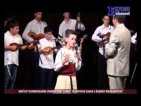 Žarko Pribaković - Ajde Kato, Ajde Zlato
