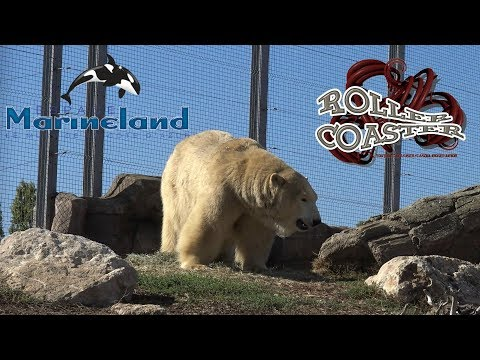 Tour Complet Marineland Antibes  2017 Complete Walkthrough